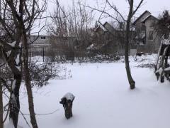 Buy land in Bucha (Kyivs'ka region) on 1 Liniia str.