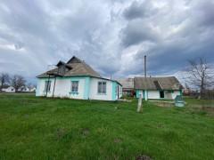 Buy a house, Vil'na Tarasivka village (Kyivs'ka region) on Shevchenka str.